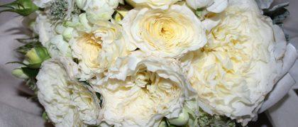 fiori non solo white milano